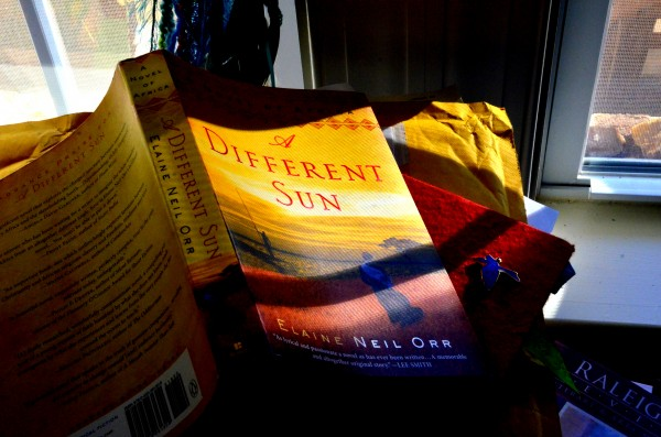 A Different Sun by Elaine Neil Orr B